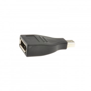 Mini DisplayPort Plug to DisplayPort Female Socket Converter...